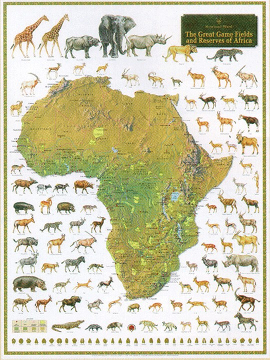 The Great Game Fields and Reserves of Africa Posters