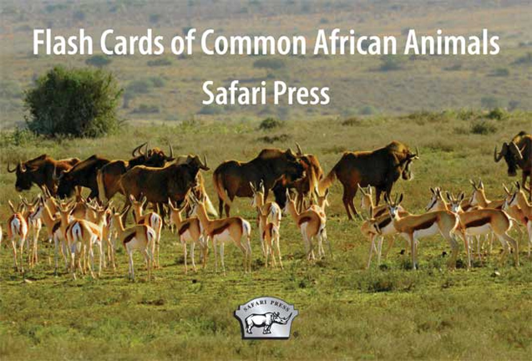 African Animals Flash Cards